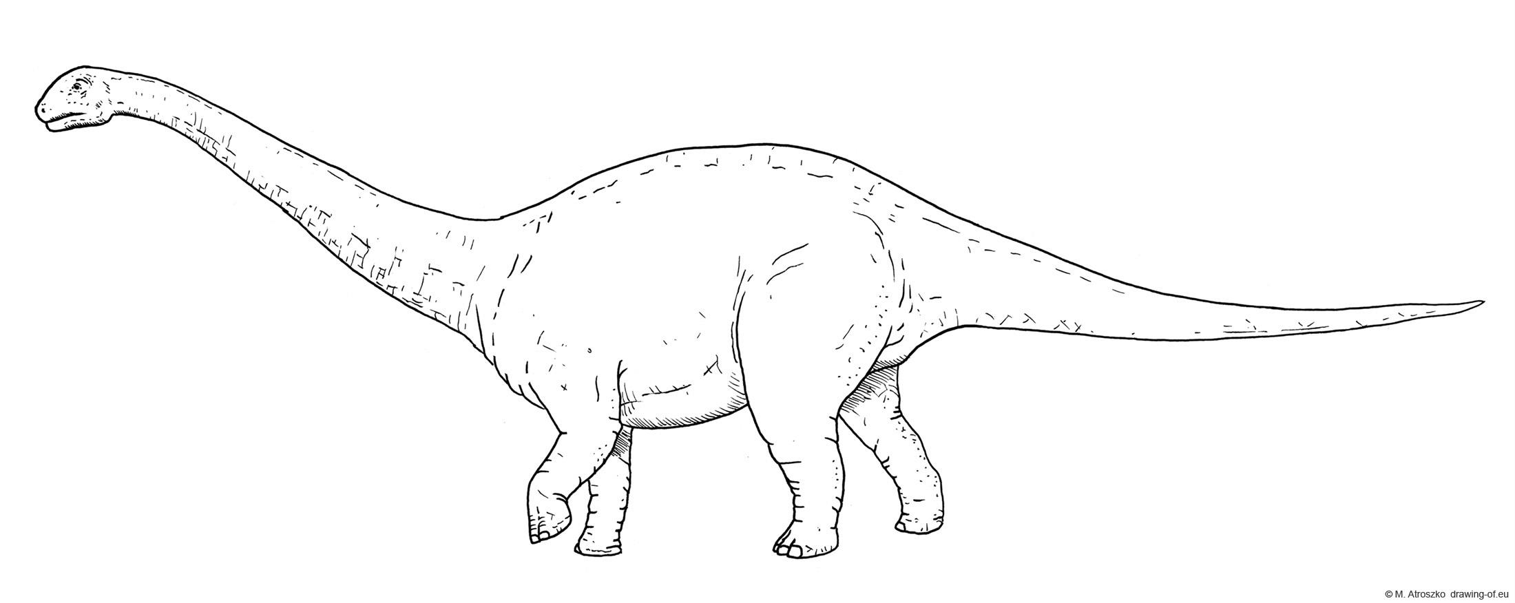 Apatosaurus dibujo