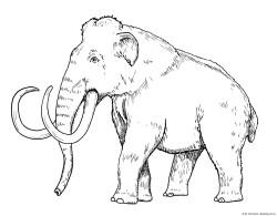 Mammuthus dibujo
