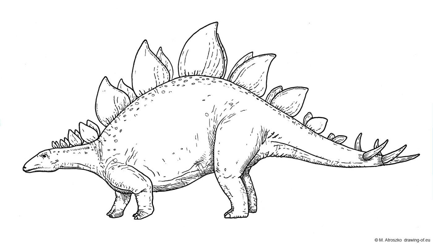 Stegosaurus dibujo