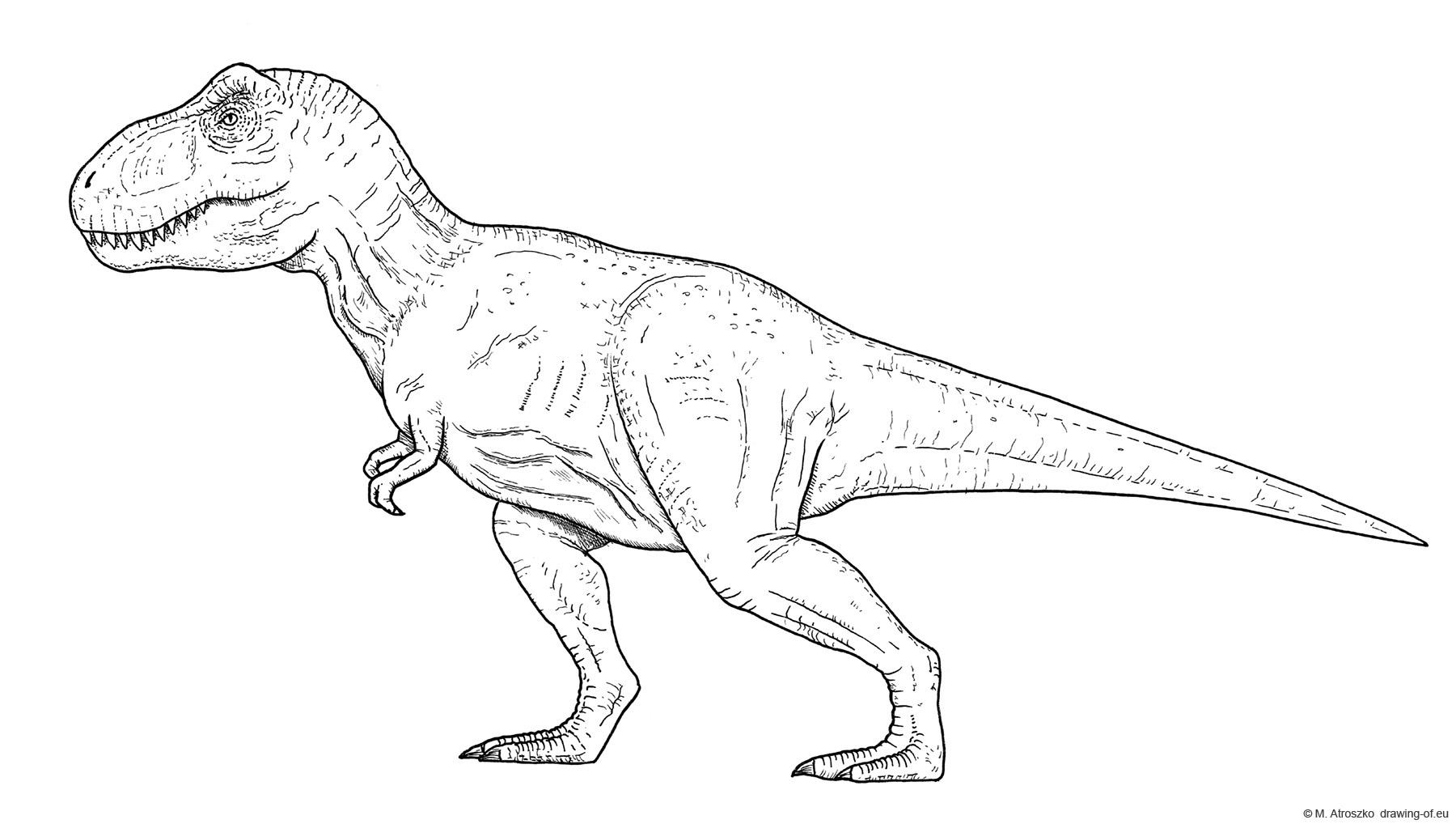Tyeannosaurus rex dibujo