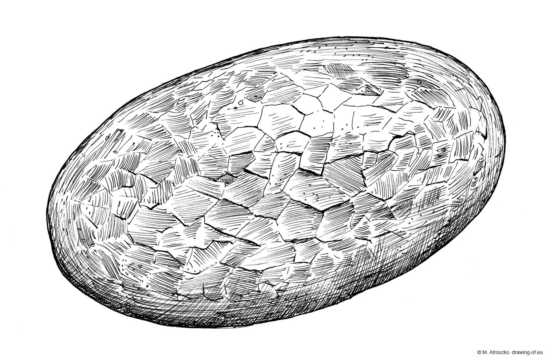 dibujo del pan