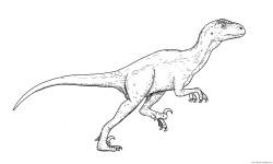 Deinonychus dibujo