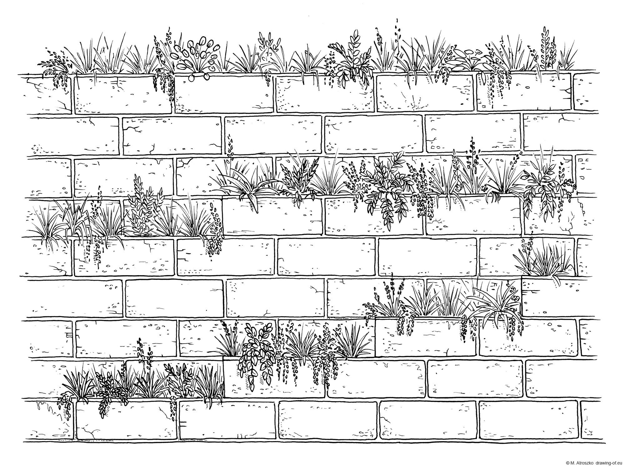 Dibujo de la pared verde